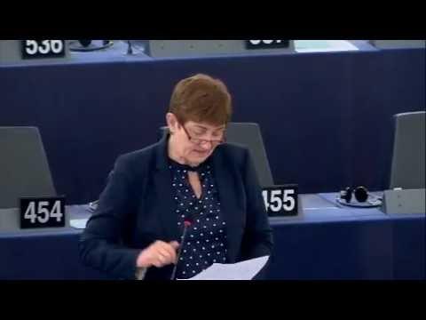 MdEP Cornelia Ernst (DIE LINKE.): EU-Strategie zur Umgestaltung des Energiemarktes
